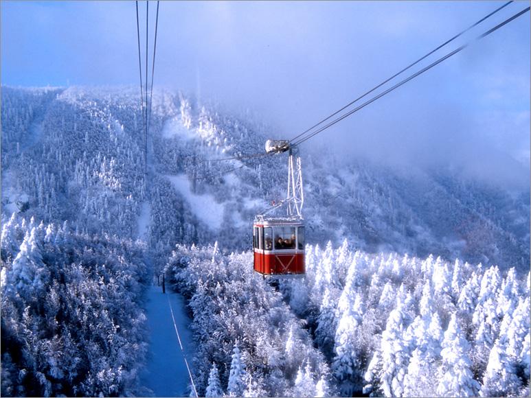 Uludag-Snow-Landscape