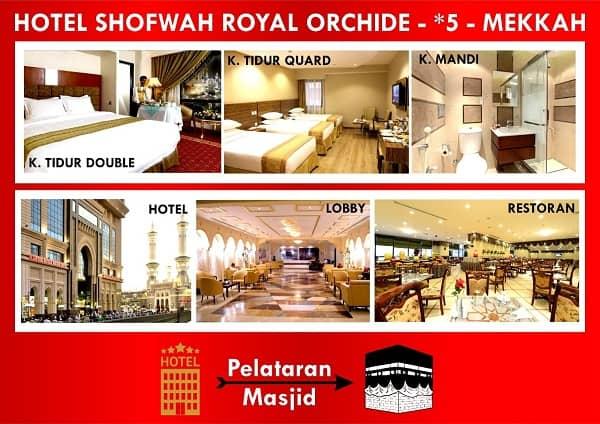 shofwah-royal-orchide
