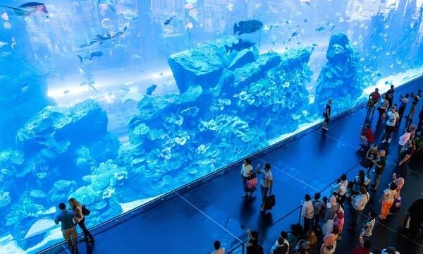 dubai-aquarium