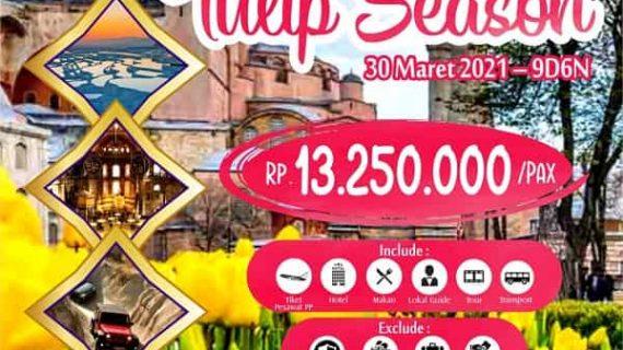 best-tulip-turki-2021